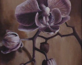 small original oil painting orchid - orchid study in oils - oil painting of flowers by artist Anita Dewitt