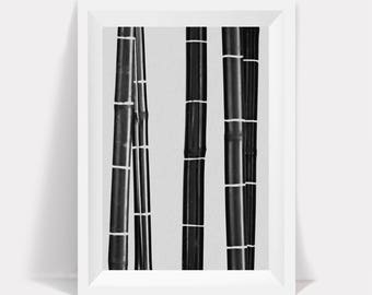 Black and White Bamboo Print, Black and White, Abstract Printable, Minimalist Art, Printable Art, Plant Print, Black and White Modern Art