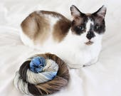 Kittykins - Nuthatch - 75/25 superwash merino/ nylon sock yarn