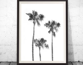 Palm Tree Print, Tropical Print, Black And White Palm, Printable Palm, California Tree Art, Tropical Wall Art, Tropical Decor, Large Poster