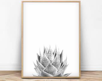 Succulent Print, Succulent Wall Art, Succulent Photo, Modern Wall Art, Black and White, Grey, Photography Art, Instant Download, Wall Art