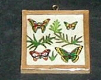 Miniature BUTTERFLIES IN FRAME