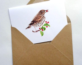 Thrush Bird Card   Watercolour  Bird Card
