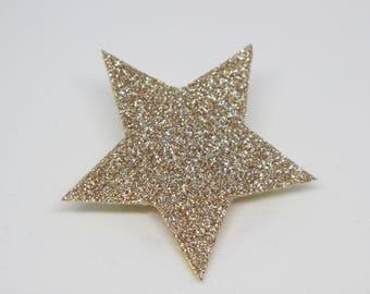 Brooch star glitter