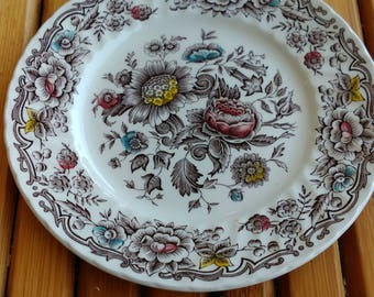 "Plates ridgway ironstone collection ""clifton"""