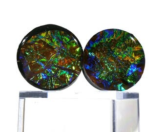 Green Valley Plugs with Colourful Dichroic