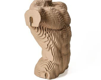 Male torso  - cardboard sculpture