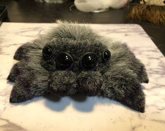 Purple and grey cute spider