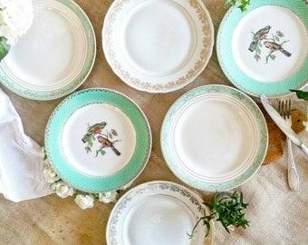 Golden Green - Set of 6 mismatched dinner plates vintage