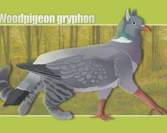Gryphon character design