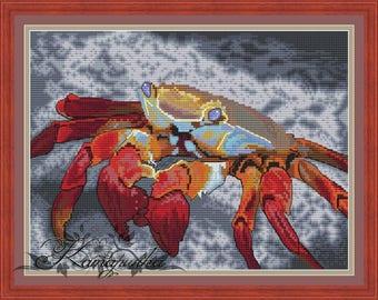 Red Galapagos crab