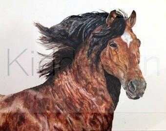 Acrylic Horse Portrait Print