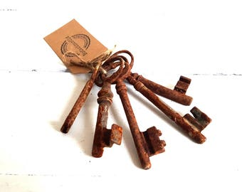 Vintage French rustic lot old keys