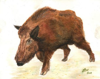 Watercolor painting French Wild boar Sanglier Hunting animal wild pig hog