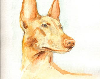 Custom dog portrait - watercolor painting of a pet - painting from a photo - made to order
