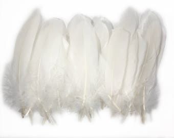 6-8 inches Plain White Natural Craft Goose feathers