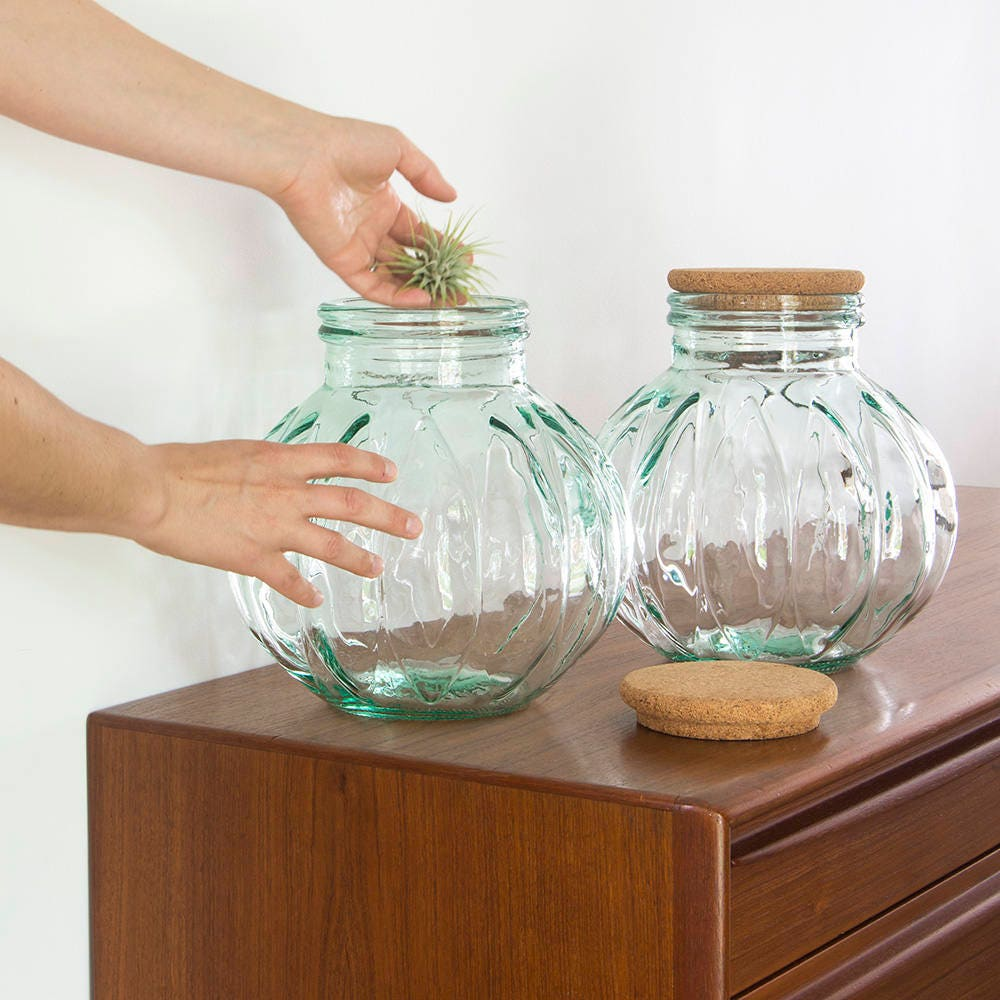 vintage large glass jar with cork lid made in italy terrarium. Black Bedroom Furniture Sets. Home Design Ideas