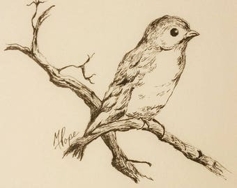 Birdie in ink/Bird drawing/Archival ink/5 x 7 drawing/ink drawing/bird art/home decor