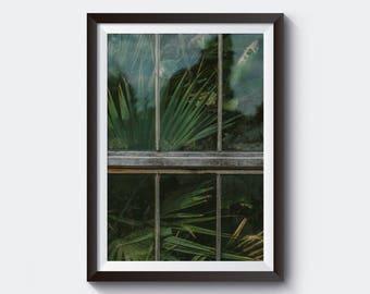 Leaf Printable, Tropical Wall Art, Tropical Decor, Botanical Print, Leaf Print, Green Leaf Decor, Leaf Photo, Tropical Photo
