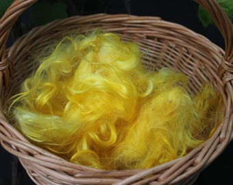 2 oz 60 gr Washed Mohair Locks in  yellow color, Natural Colored Locks, Angora Goat, Doll Hair, Spinning, Blending Locks, angora curls