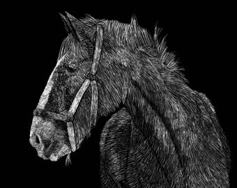 Draft Horse Black and White Scratchboard Drawing Print, Clydesdale Horse Painting, Rustic Farm Wall Art