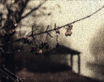 Twig Photography Textured Background Instant Download