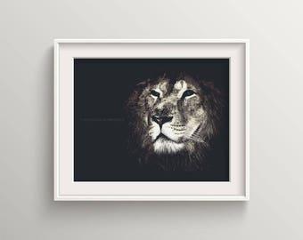 Lion King in the dark, Lion art, lion print, animal wall art, lion picture, wildlife, wildlife art, interior decoration, wildlife print, art