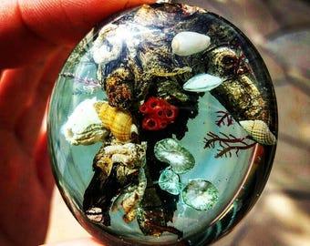 marine pendant, sea pendant, marine necklace, sea necklace, shell necklace, shell pendant, nature necklace, wood and resin pendant
