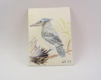Blue Jay Watercolor Painting, Original Painting, Bird Watching