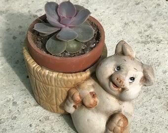 Piggy planter, farmhouse, rustic cute animal planter pot, gift