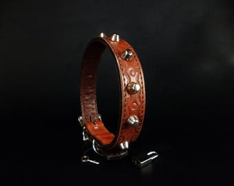 Hammered cowhide and nickel plated nails sets leather dog collar