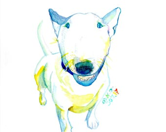 Colorfull Bull Terrier