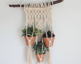 Triple Macramé Plant Hanger | Modern Macramé