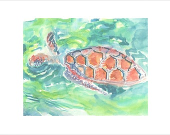 Swimming Sea Turtle print