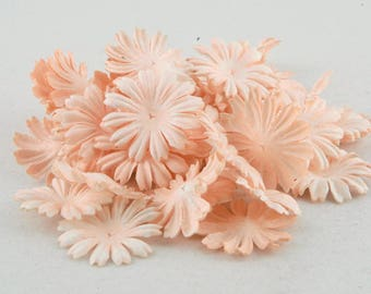 Peach Mulberry Paper Mulberry Paper Blooms Pb013