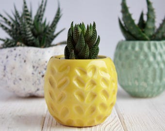 Yellow Succulent Planter - Air Plant Holder - Modern Mini Pot - Mini Planter - Ceramic Planter- Plant Holder- Succulent Pot - Cactus Planter