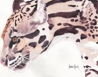 Clouded Leopard Watercolor Print