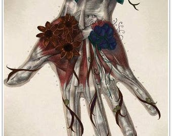 Beautiful anatomical  hand vintage style 1700's print Human body poster Medicine wall art vintage anatomy hand therapy gift