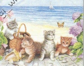 Cat paper towel
