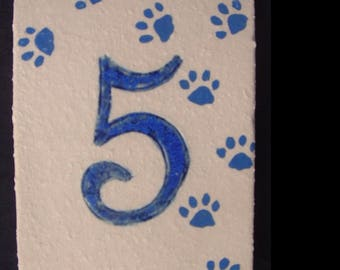 Door number '5' cat paws