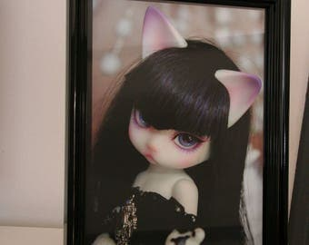 BJD Doll doll cat framed art picture