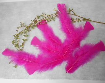 20 feathers Fuchsia about 15 cm