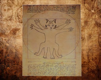 Digital creation, the Vitruvian cat