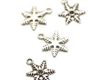 "10 charms has ""Snowflake"", 19 x 14 mm, silver, 057"