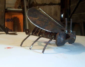 This Beetle will go great with your collections!
