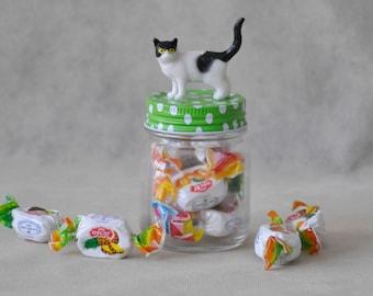 Sweet cat glass jar