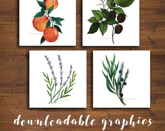 NEW! Square Young Living Graphics