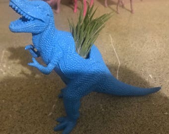 Blue dinosaur airplant holder/ airplant