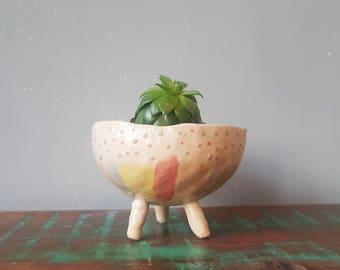 The Petal Fairies Collection - Ceramic, succulent pot, cactus pot, plant pot, home studio pottery, home decor, office decor, pinch pot.