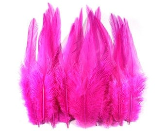 Rooster Feathers Pink 10305